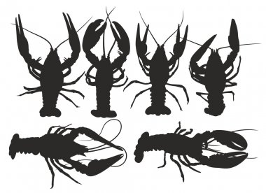 Silhouettes of lobsters.