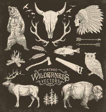 Vintage Wilderness Vector Illustration Set