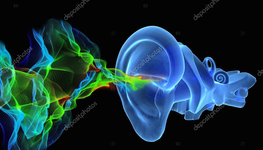 Anatomía de oído 3D con olas siund — Foto de stock © ingridat #95945036