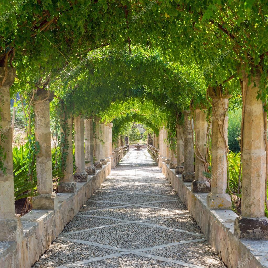Regarder Un Vieux Jardin Arabe Photographie Mark1087 C 104309668 - Jardin-arabe