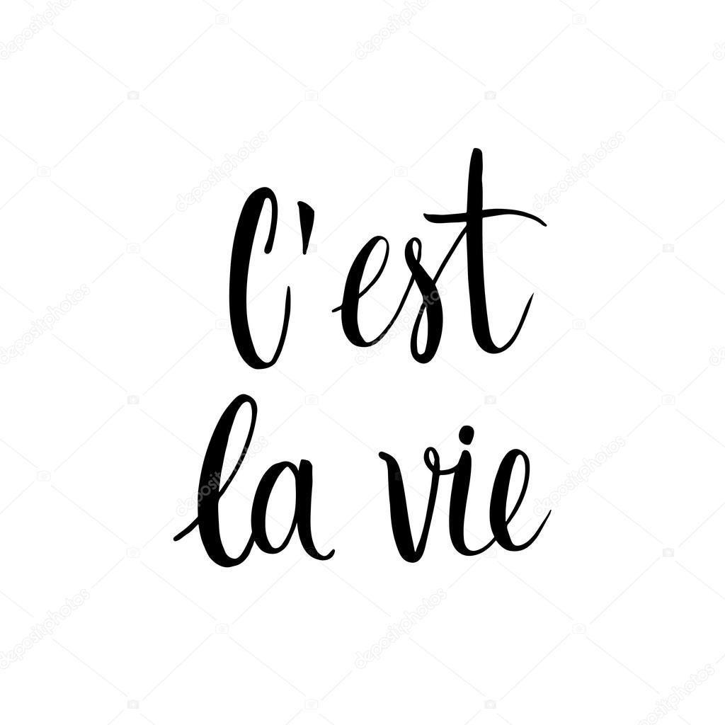 La Vie Est Belle Wallpaper C Est La Vie Card Stock Vector
