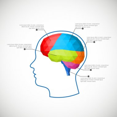 Infographic element - polygonal brain. Vector illustration