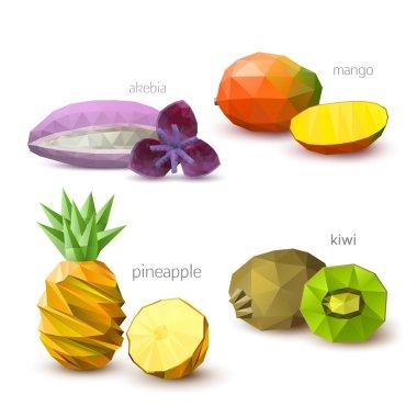Set of polygonal fruit - akebia, mango, pineapple, kiwi. Vector