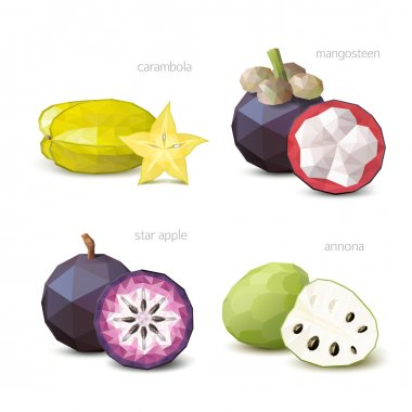Polygonal fruit - carambola, star apple, annona, mangosteen. Vec