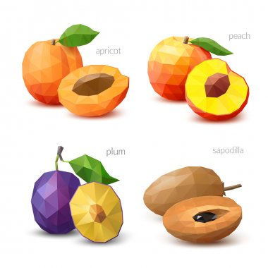 Set of polygonal fruit - apricot, peach, plum, sapodilla. Vector