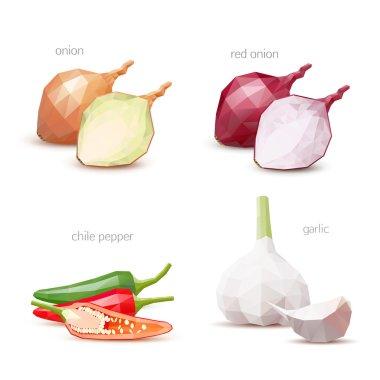 Polygonal vegetables - garlic, chile pepper, onion, red onion. V