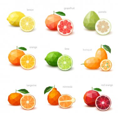 Set of polygonal citrus fruit - lemon, grapefruit, pomelo, orang