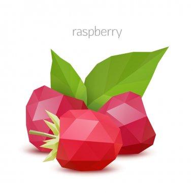 Polygonal berry - raspberry. Vector illustration