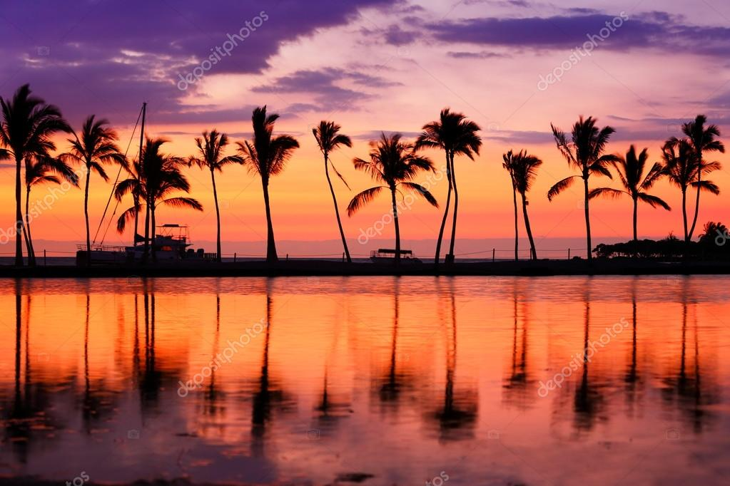 Beach Sunset Landscape With Palm Trees Stock Photo