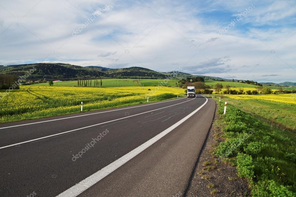 White truck arrives from a distance on an asphalt road between the yellow flowering rapeseed field