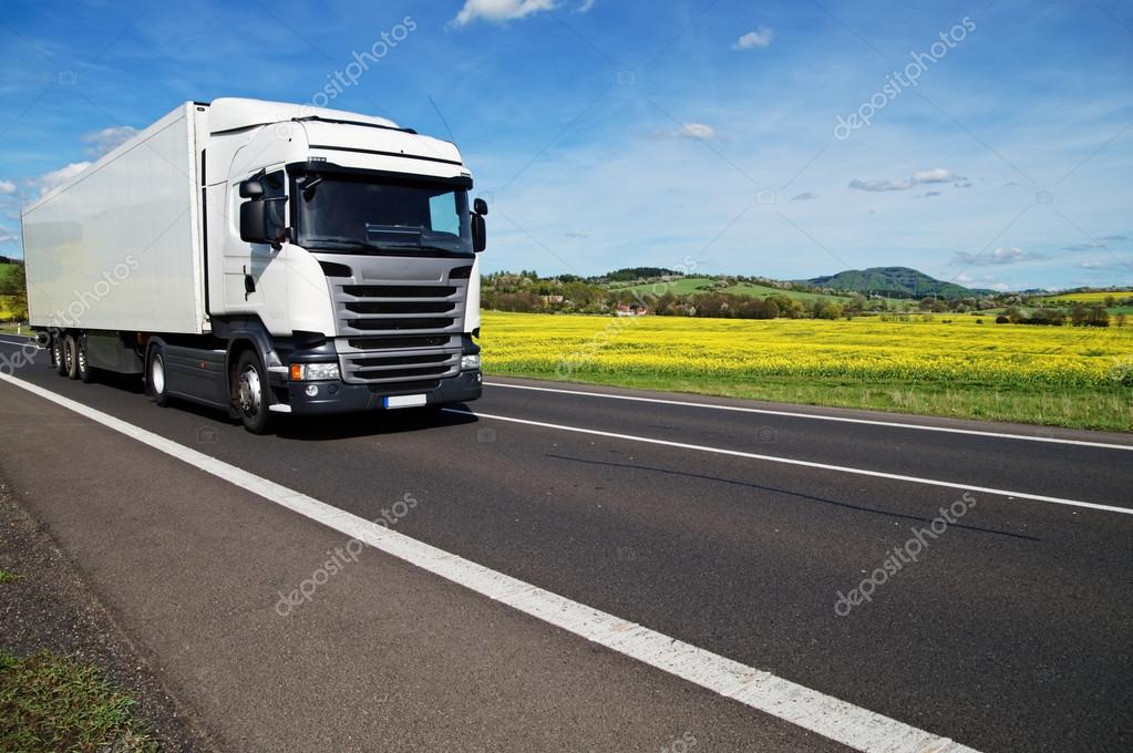 White truck on the asphalt road between yellow flowering rapeseed field in a rural landscape