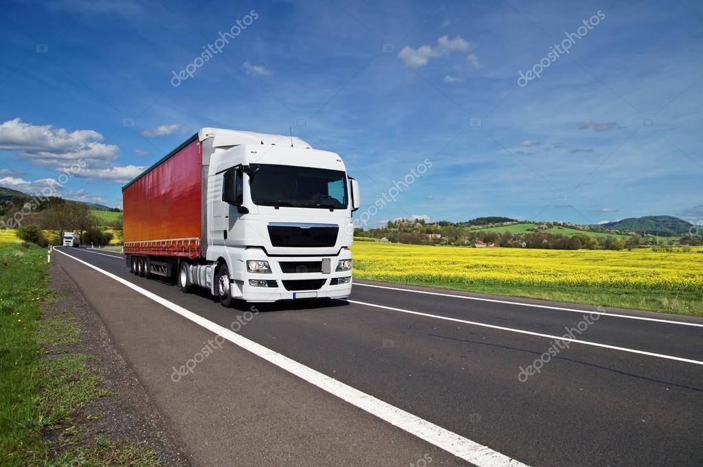 White trucks driving on asphalt road between yellow flowering rapeseed field