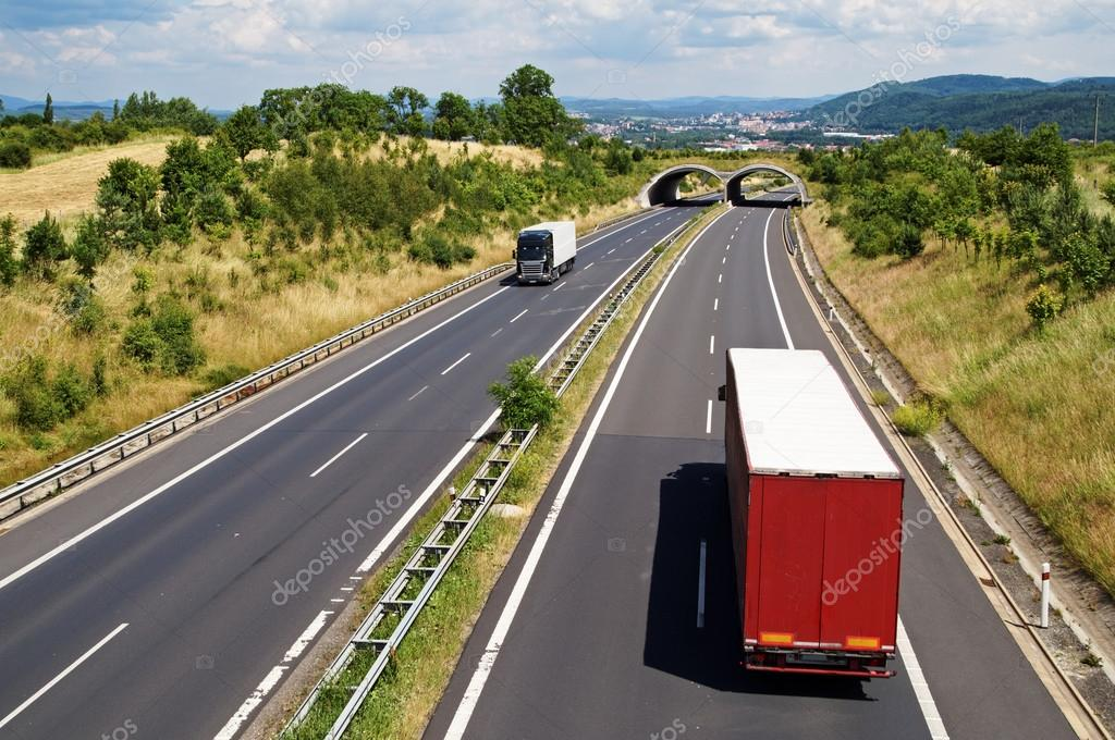 Corridor highway with the transition for animals. Trucks ride the highway.
