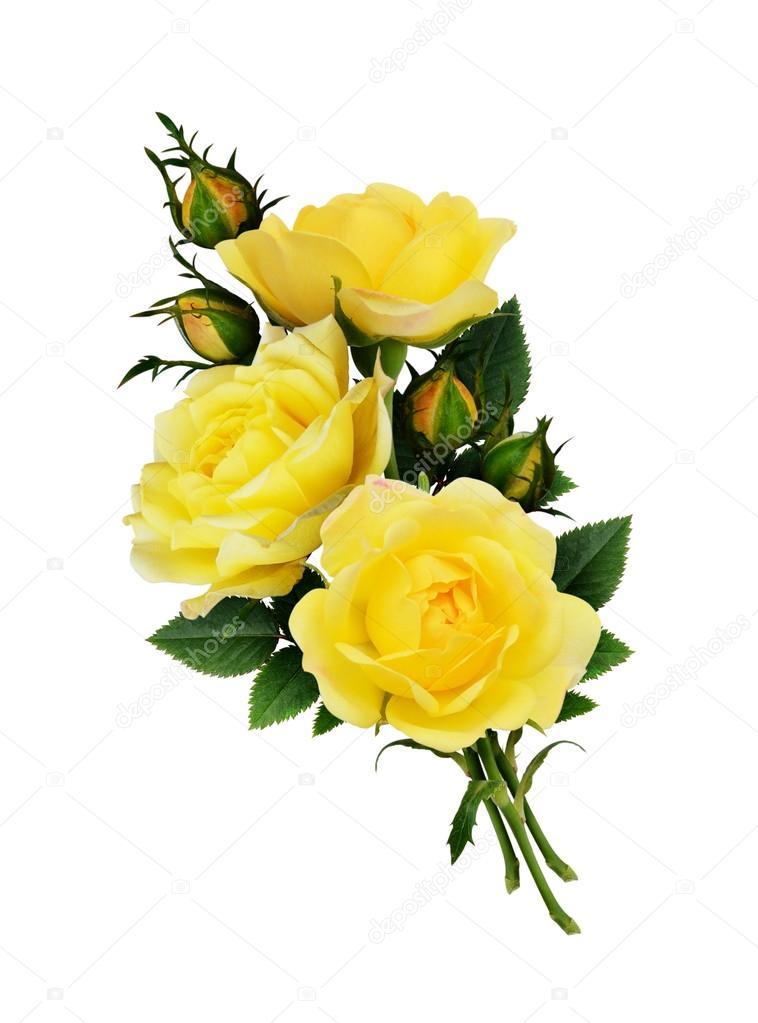 Ganz und zu Extrem Gelbe Rosen-Blumen-Strauß — Stockfoto © ksushsh #124337728 &JC_06