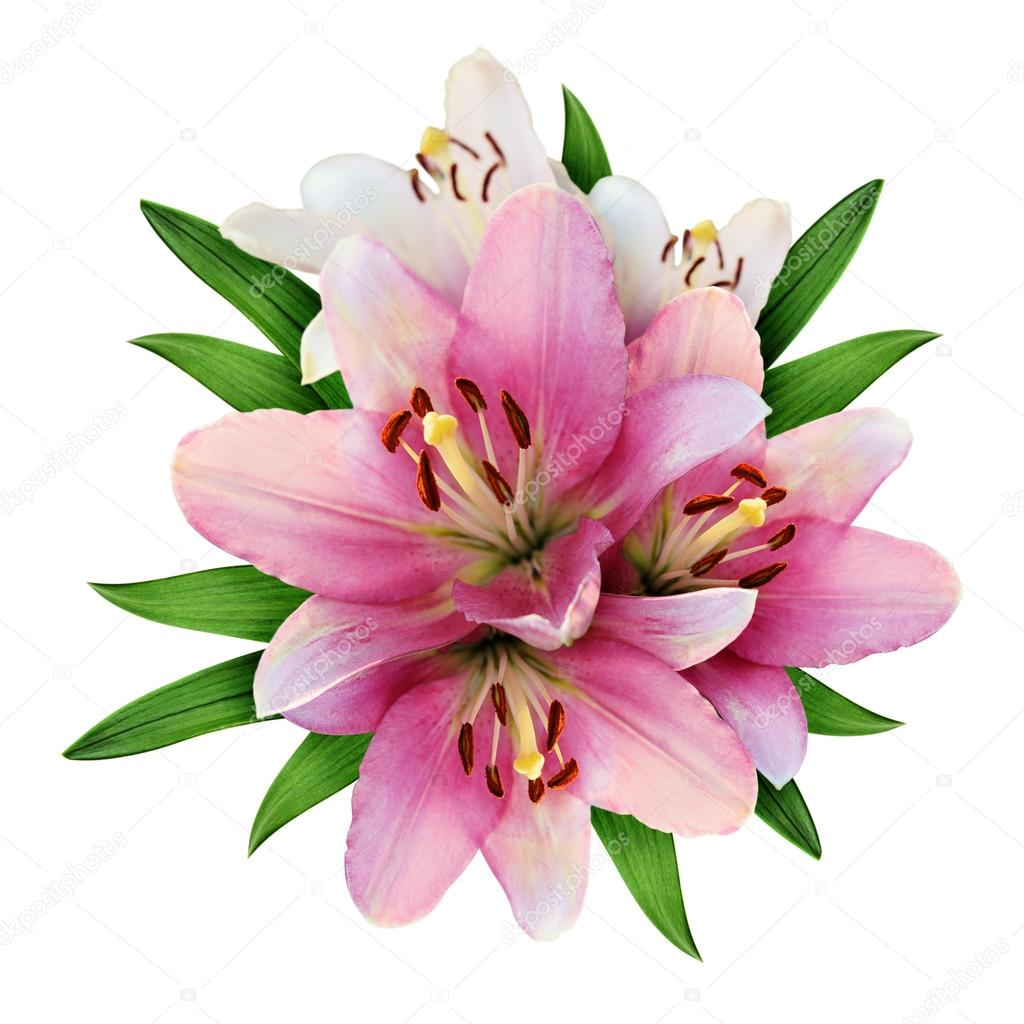 Pink lily flowers bouquet stock photo ksushsh 124337772 pink lily flowers bouquet stock photo izmirmasajfo
