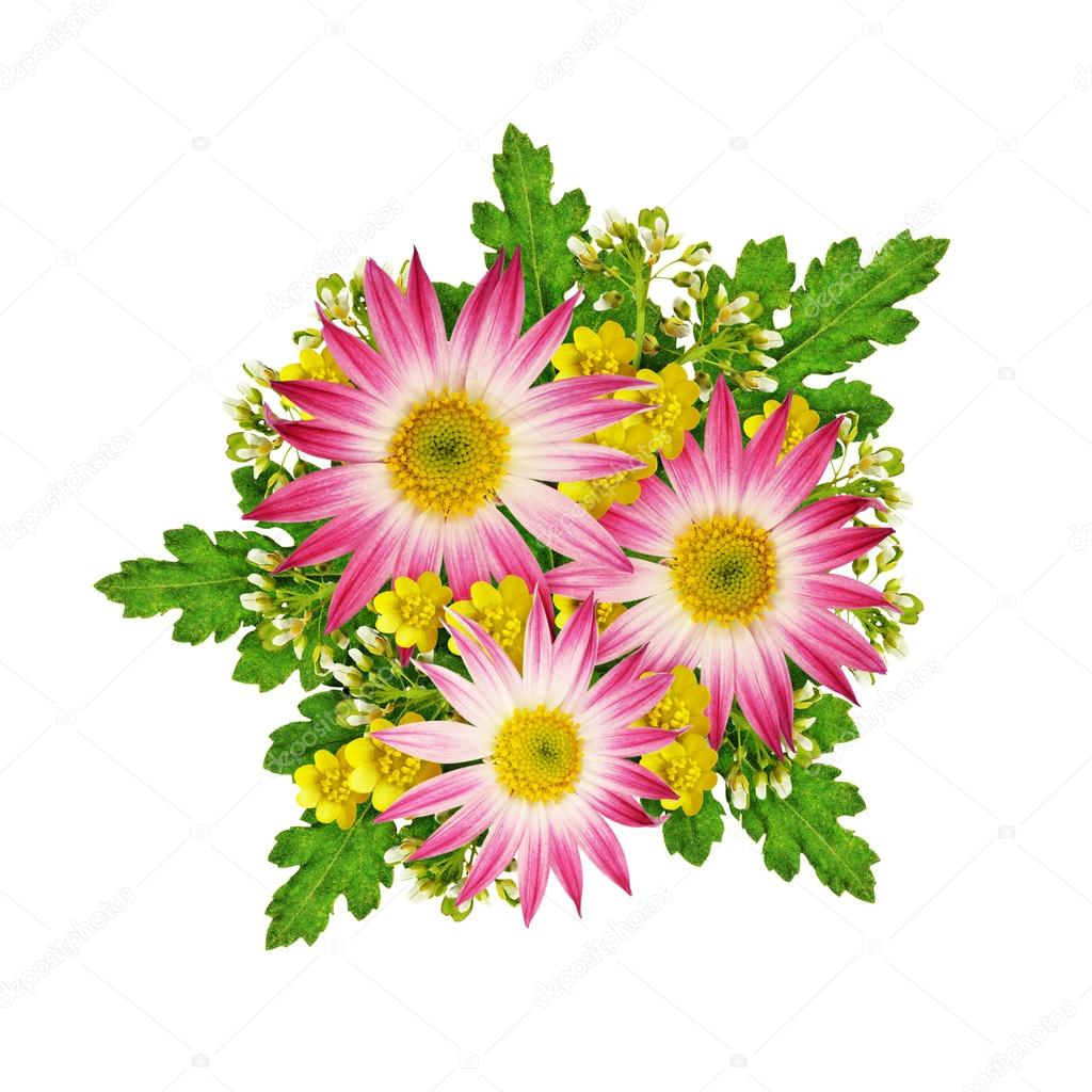 Asters and wild flowers bouquet stock photo ksushsh 88280378 asters and wild flowers bouquet isolated on white photo by ksushsh izmirmasajfo