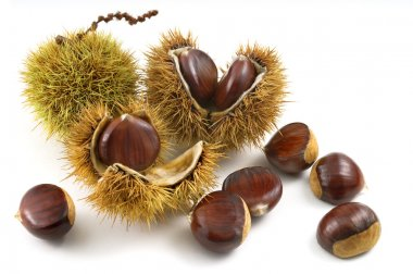 organic chestnuts siolated