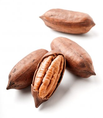 pecans isolated