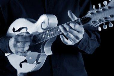 bluegrass mandolin player