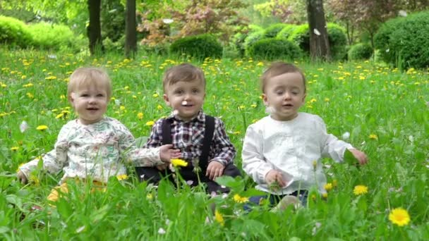 Three children on the grass on which the petals are falling from the trees, slow motion