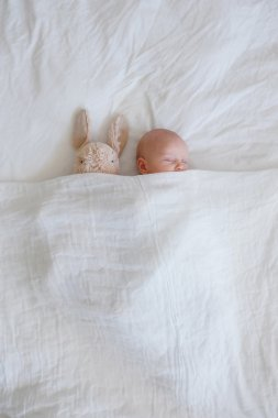Sleeping baby and bunny