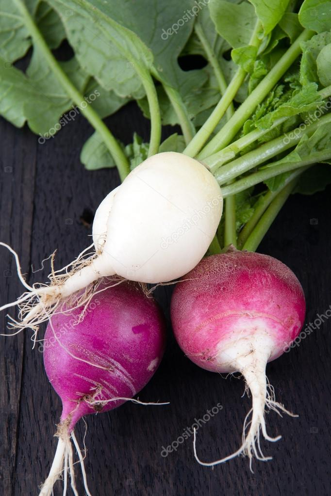 Fresh organic radish crop harvested closeup