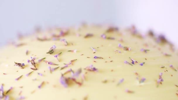 Blumen fallen auf das Dessert. Konditor bereitet ein ungewöhnliches Dessert zu. Zeitlupenmakro