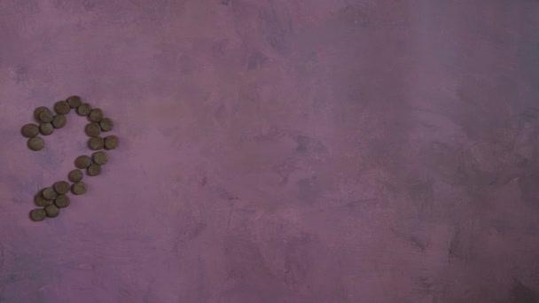 4k Stop-Motion-Video Die Zahlen 2022 erscheinen allmählich aus Hunde- oder Katzen-Trockenfutter auf rosa hellem Hintergrund. Silvester- oder Weihnachtskonzepte auf flacher Fläche. Haustierschale mit Futter statt Null.