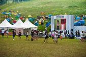 Chipyeong údolí rockový festival 2013