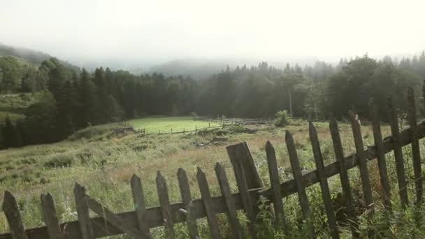 Beautiful landscape in the Carpathian mountains. HD