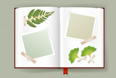 Opened Album With Blank Photo Frames And Dried Leaves