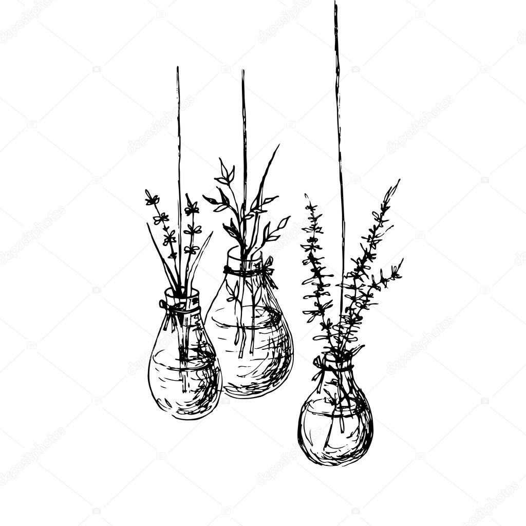 Herbs In Hanging Vases Ink Drawing