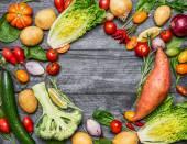 Variopinti vari del BIO allevamento verdure