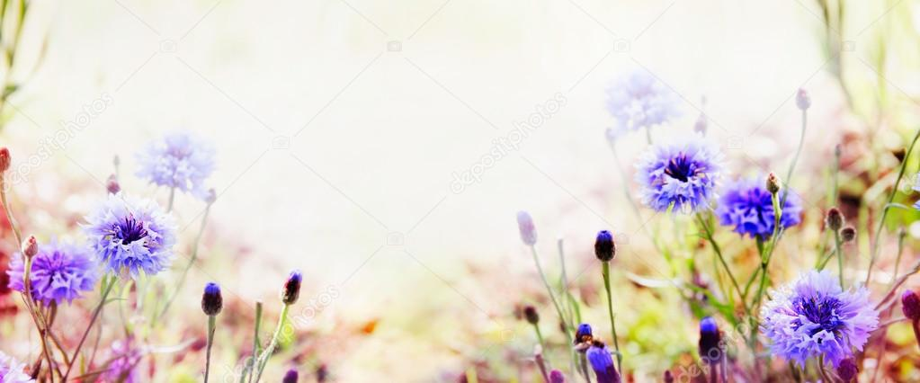 Floral nature background