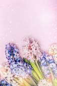 Pályázati Jácint virág