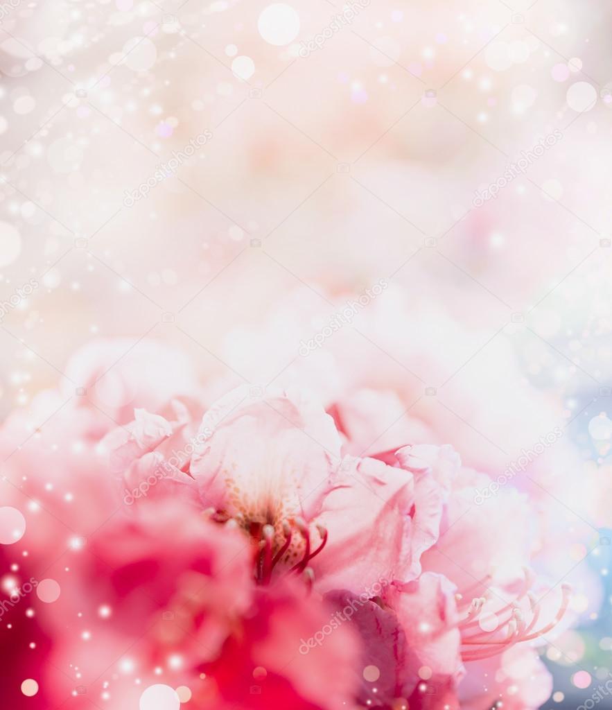 Pink Pastel Floral Background Stock Photo C Vfotografie 114543366