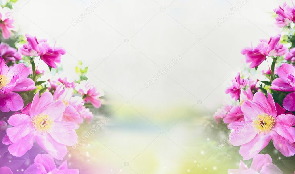 Fondo De Flores De Color Rosa Pastel