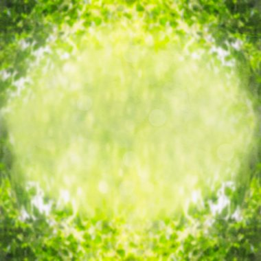 Green nature background