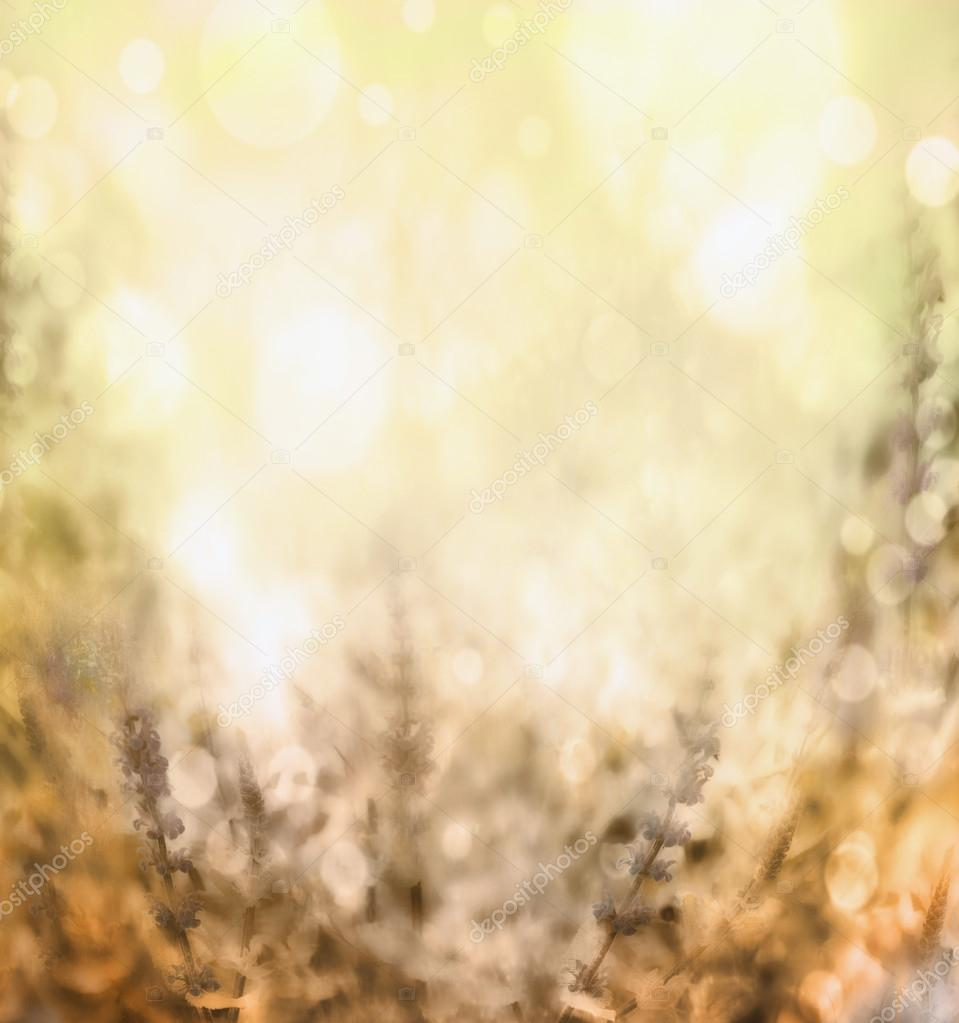 Light brown yellow blurred nature background