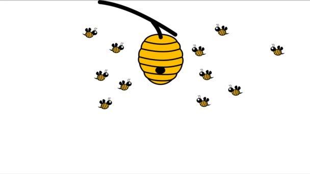 18 včely zpět do úlu