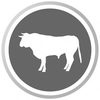 A bull in a grey Panel