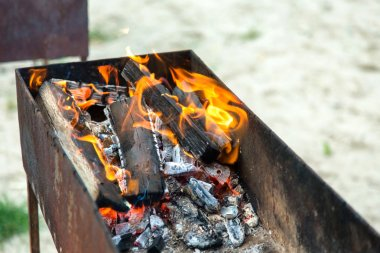 Fire brightly burning in the brazier