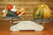 Fotografie Pěstování zeleniny na ekologické farmě. Zelenina v malé domácí zahrady. Starý kovový váha na domácí jídlo. Pozadí se zeleninou. Prosazování zdravé stravy, dietní přípravky