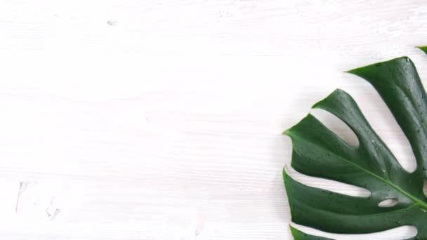 trendige Sommer tropischen Monstera Blätter auf weißem Holzhintergrund, Kopierraum