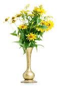 Fotografie žluté květy