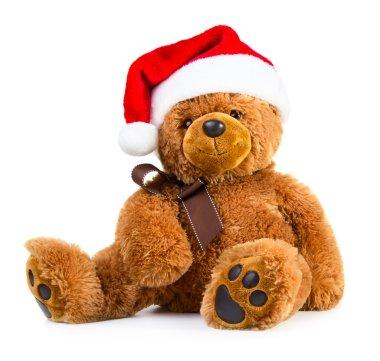 Teddy bear wearing santa hat