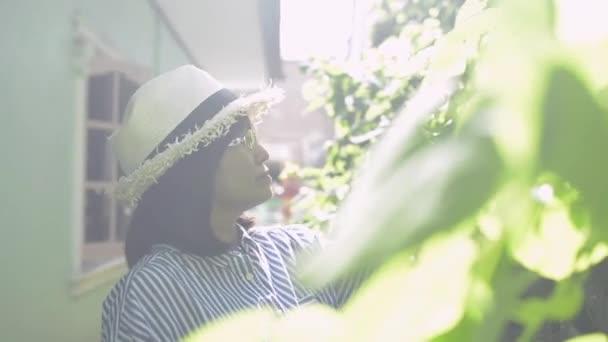 Asijka v brýlích se slaměným kloboukem si užívá péči a prořezávání zelených rostlin v domě za ranního světla. Rostliny se starají. Koníčky a volný čas. Zdravý životní styl.