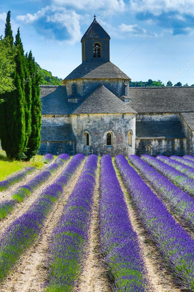 depositphotos_55273587-stock-photo-lavender-in-provence.jpg