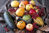 Autumnal pumpkins and apples, harvest