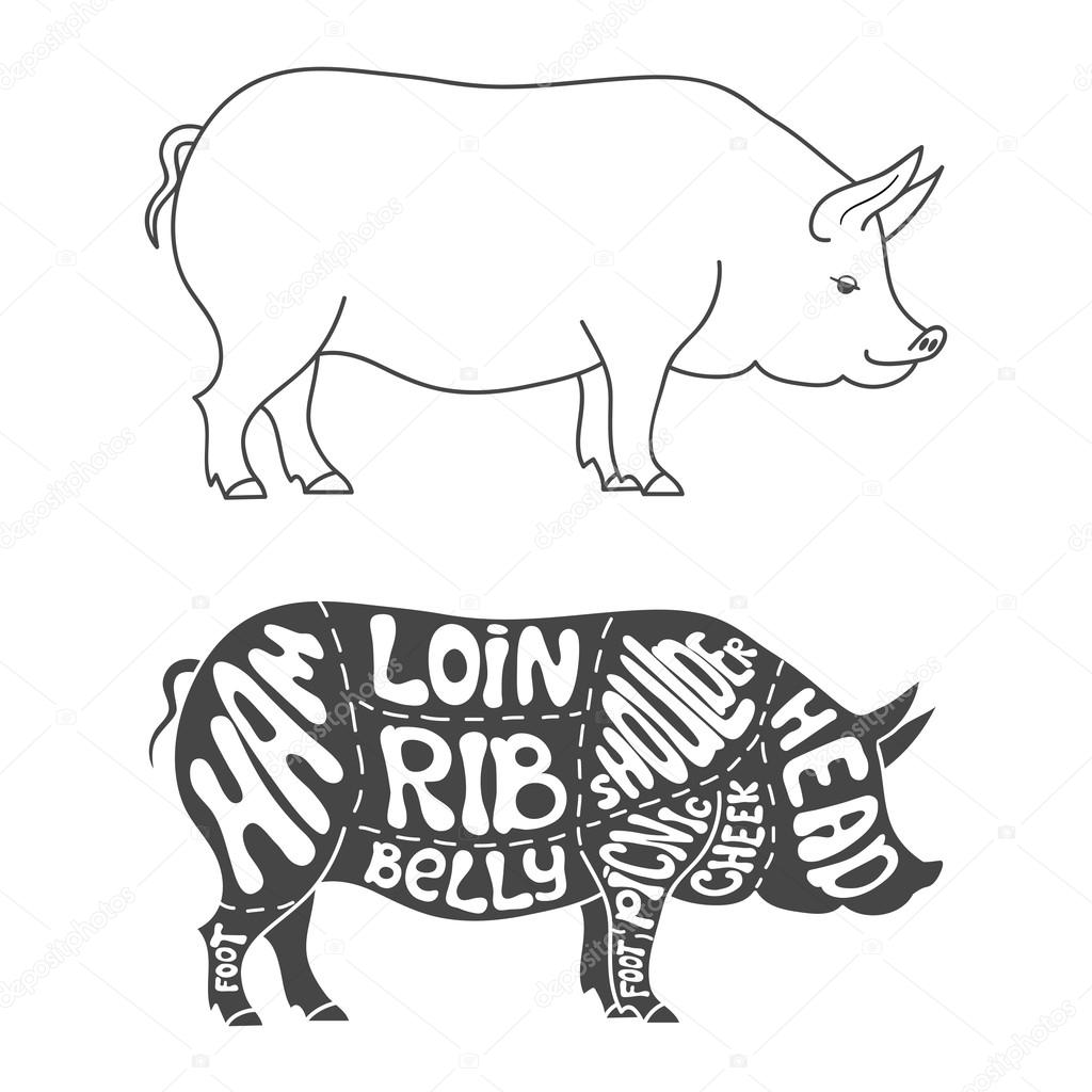Search Vectors besides Rare Breed Beef Budget Selection Box For Four likewise Exactly Where Your Favorite Cut Of Meat Is Taken From furthermore Stock Illustration Slab Steak Meat Pork Lamb Chop Drawing Retro Style Linear Delicious Best Cuts Sketch Isolated Vector Illustration Image61970820 in addition National Butchers Week 2014. on butcher cuts of pork